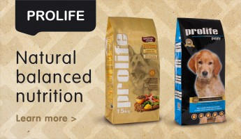 Natural balanced nutrition - Prolife