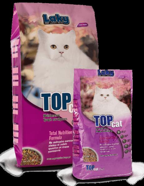 Top_Cat