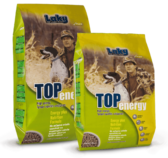 Top_Energy