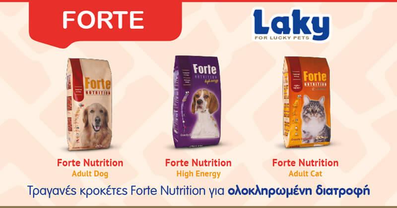 Τραγανές κροκέτες Forte Nutrition για ολοκληρωμένη διατροφή.