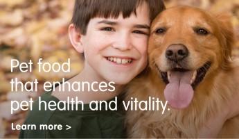 Pet health and vitality