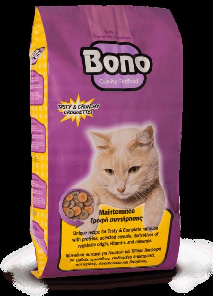 Bono_Cat