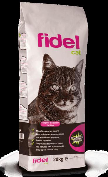 Fidel_Cat