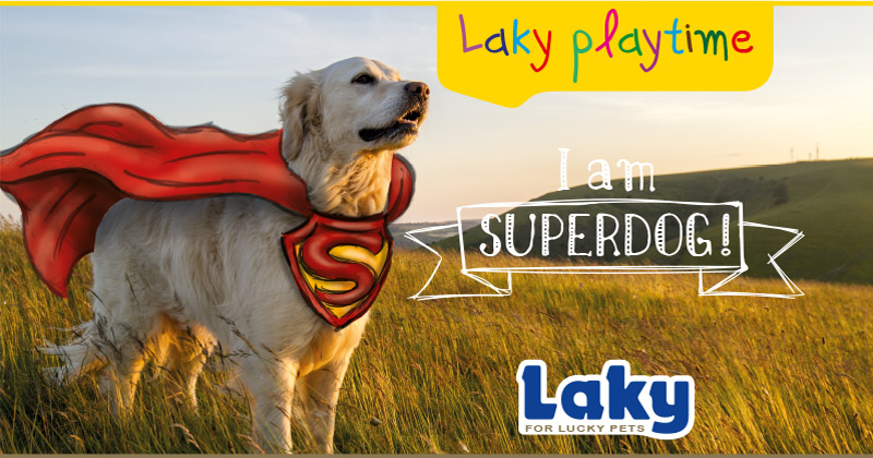 I am Superdog!