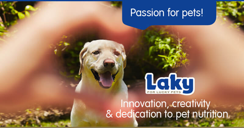 Passion for pets! Innovation, creativity & dedication to pet nutrition.
