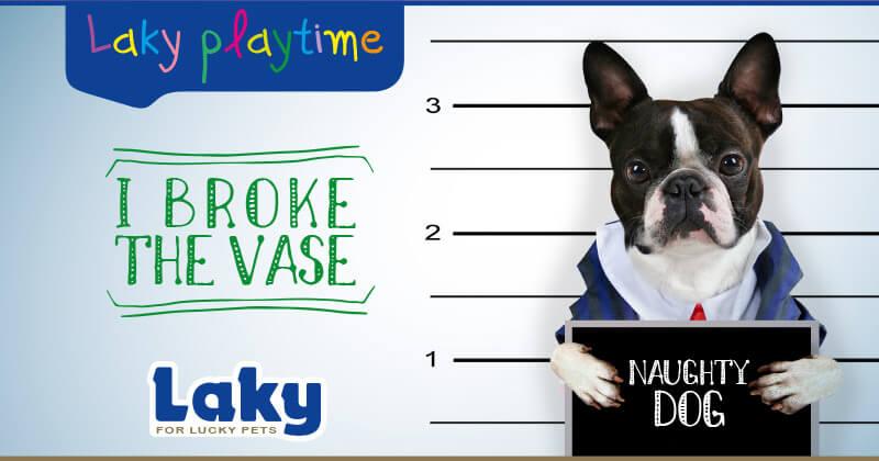 Laky Playtime: I broke the vase!