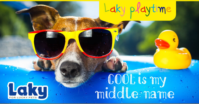 Cool is my middle name...