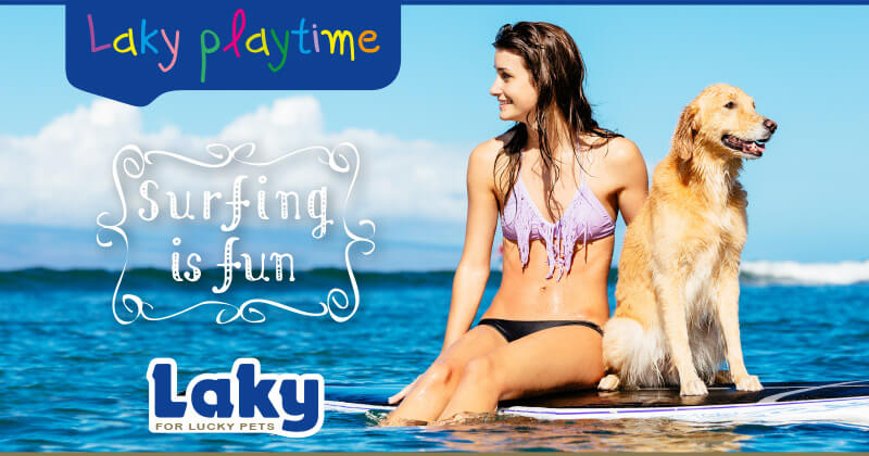 Laky playtime: Surfing is fun!