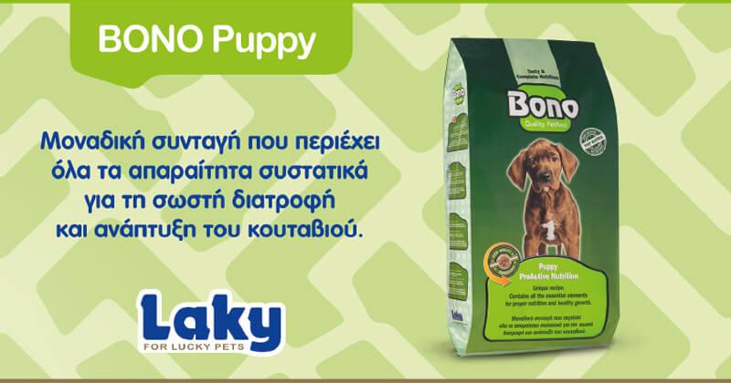 Laky Bono Puppy