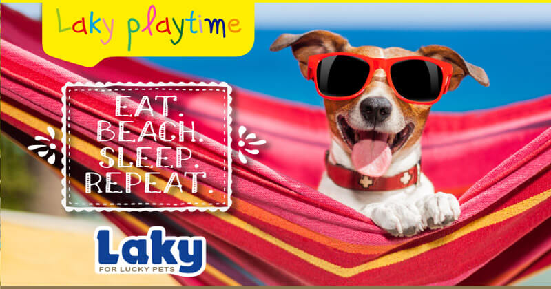 Laky Playtime: Eat. Beach. Sleep. Repeat.